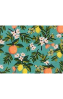 Tissu Rifle Paper Primavera Citrus Floral Teal, x10cm