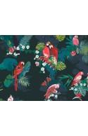 Tissu Art Gallery Fabrics Boscage Parrot Grassland, x10cm