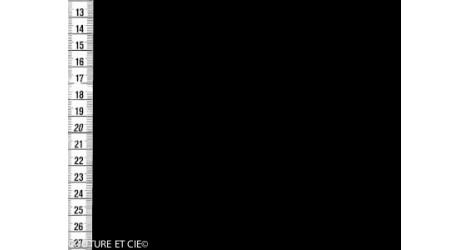 Batiste de Lawn noir dans Batistes de coton par Couture et Cie